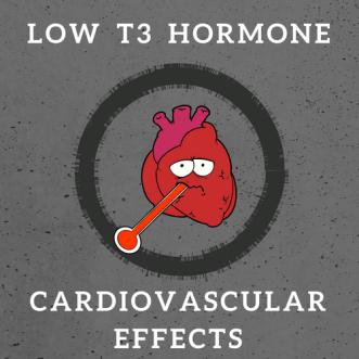 Low T3 hormone Cardiovascular