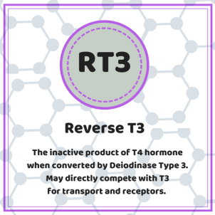 Do you have a Reverse T3 problem? – Canadian Thyroid