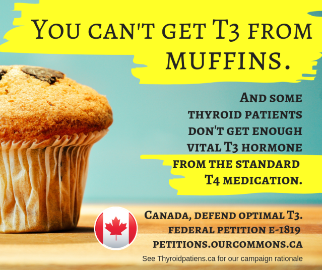 You can't get T3 from Muffins