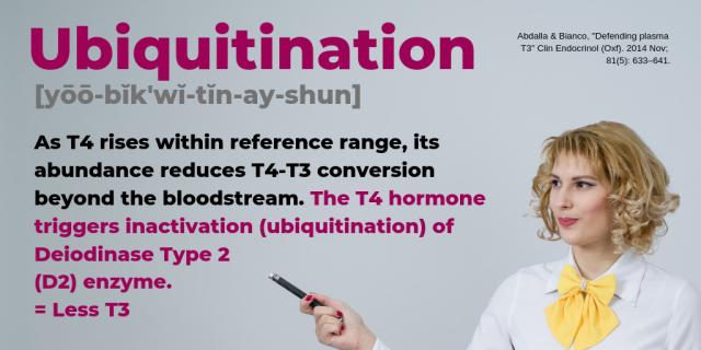 Ubiquitination