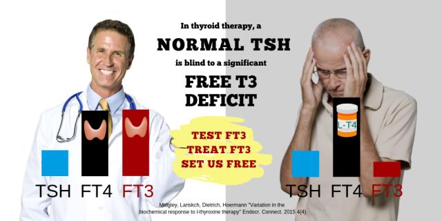 Normal TSH does not mean-MEN.png
