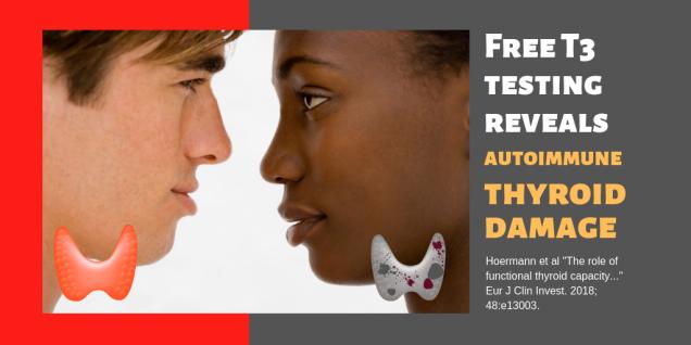 Free T3 reveals thyroid damage
