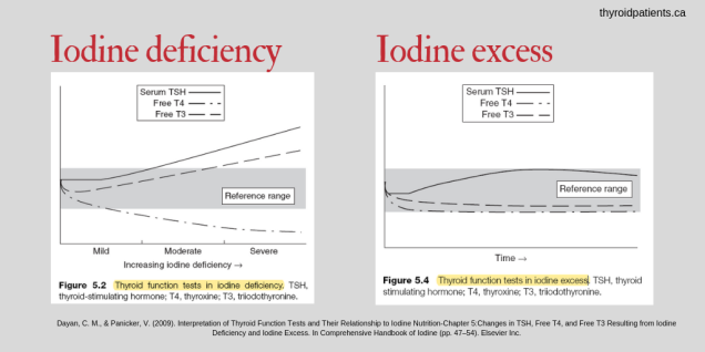 Thyroid Science's T3 Ratios-IodineGraphs